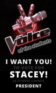Get 100% Student Voting Participation | Software 4 Schools Blog